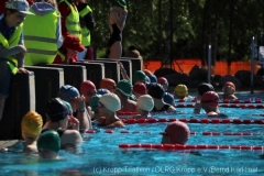 Triathlon2019-11